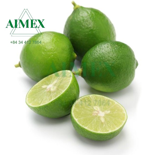 seedless-lime-for-export-from-vietnam